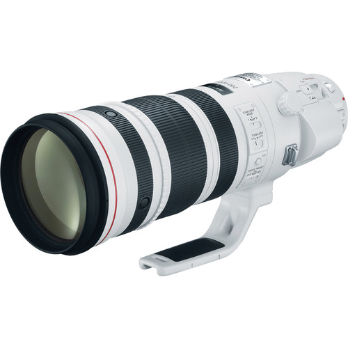 Canon EF 200-400mm F4 L IS USM W/ 1.4x Extender