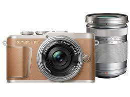 Olympus E-PL9 Twin Lens Kit [14-42mm + 40-150mm] (Brown)